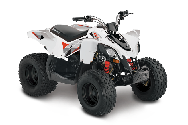 2018 Can-Am DS 90