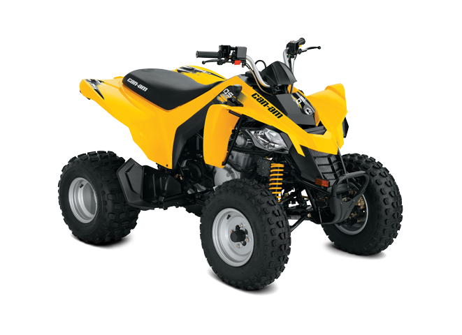 2018 Can-Am DS 250