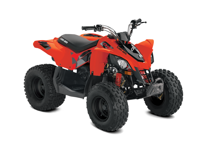 2019 Can-Am DS 70